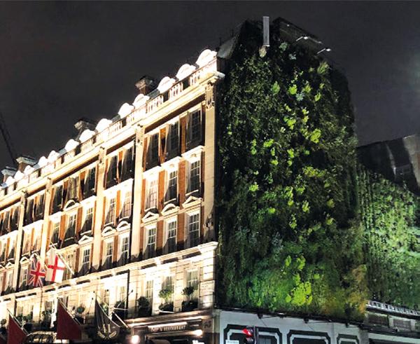 โรงแรมสีเขียว