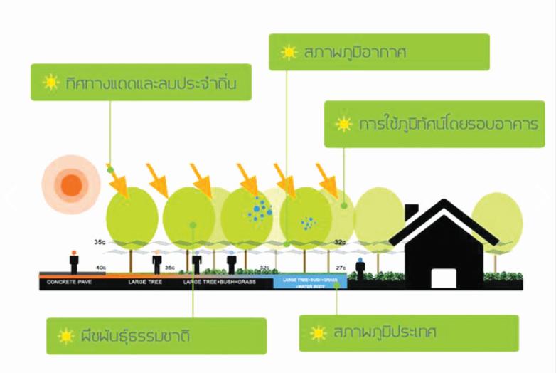 ทิศทางแสงสว่าง กับการเลือกใชวัสดุ เพื่อออกแบบอาคารประหยัดพลังงาน