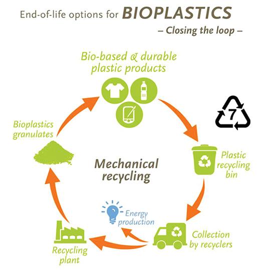 แนวทางการใช้งานและการจัดการไบโอพลาสติกอย่างถูกวิธี