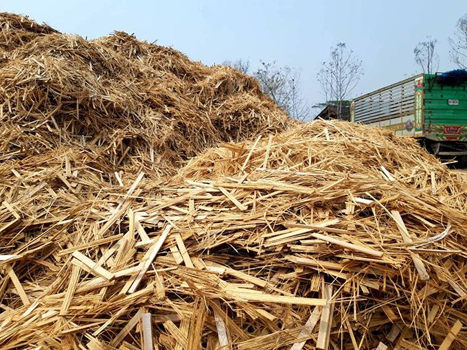 ชีวมวล (Biomass)