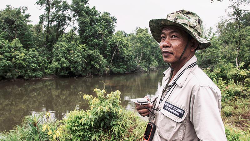 งานปกป้องผืนป่า