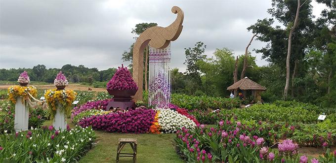 พื้นที่ชุมชนแปลงใหญ่ไม้ดอกไม้ประดับบ้านห้วยสำราญ